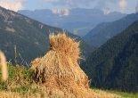 Bauernhofurlaub im Grödnertal